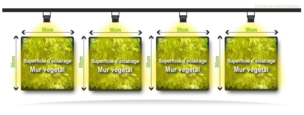 Information éclairage mur vegetal LED